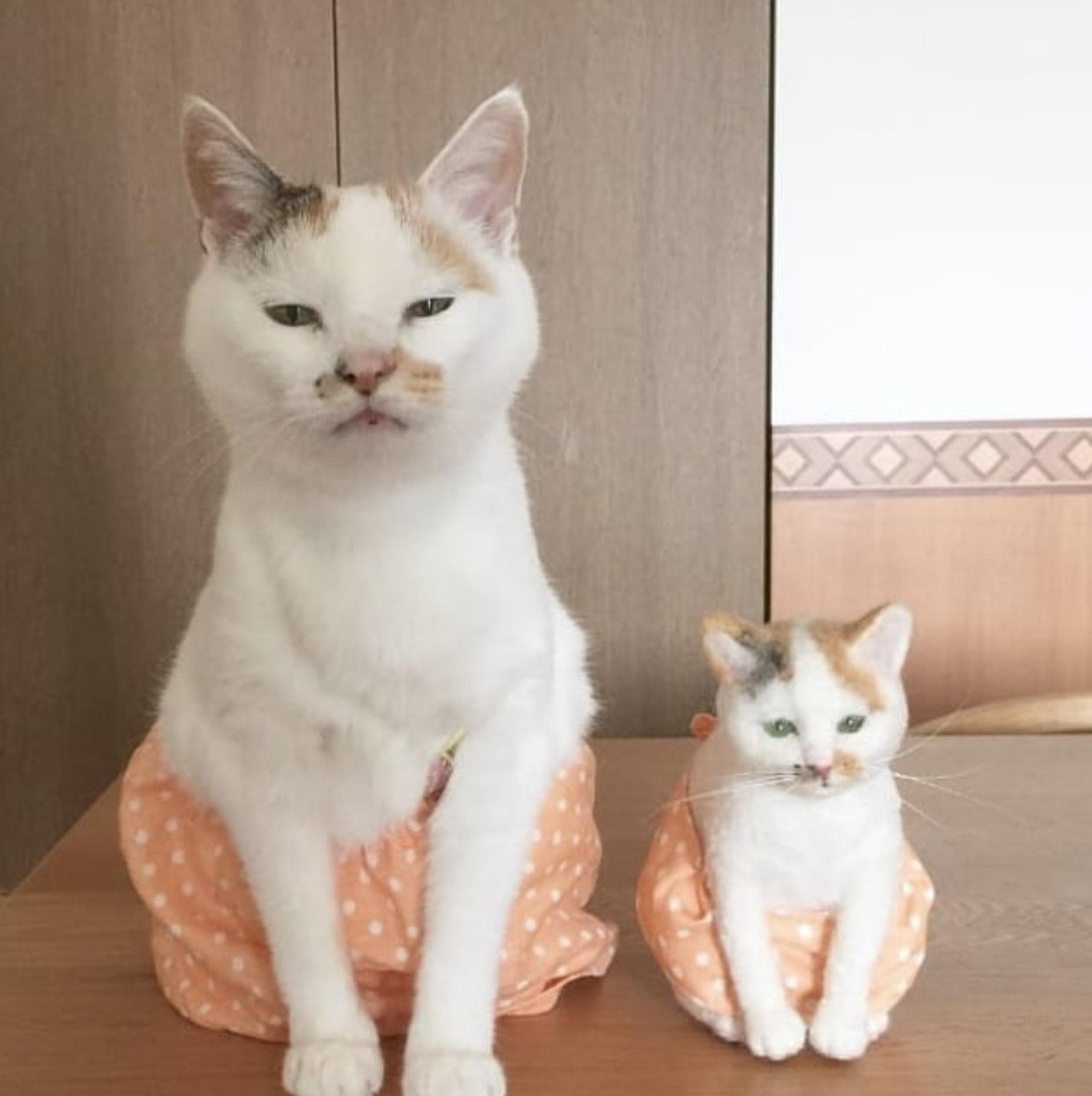 кот с маленькой игрушечной версией себя