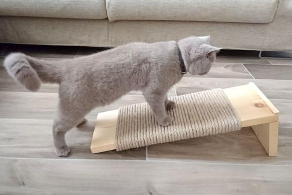 Напольная когтеточка для кота
