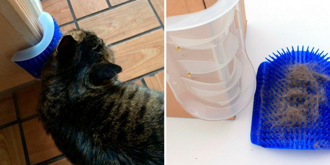 Чесалка на крепеже для кота