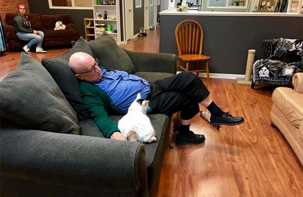 Терри спит с кошкой