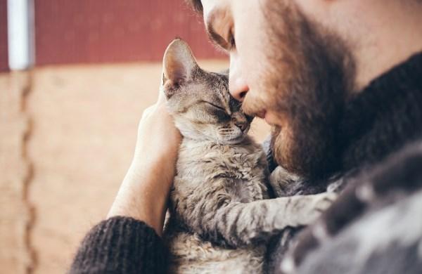 Кот с бородатым мужчиной