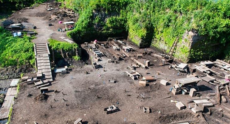 Ученые нашли останки древних кошек и собак