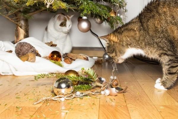 Две кошки разбили елочные игрушки