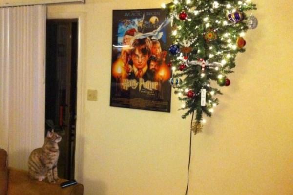 Хорошее решение в доме с кошкой - подвесить елку к потолку
