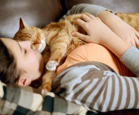 Ученые выяснили, почему коты любят спать налюдях