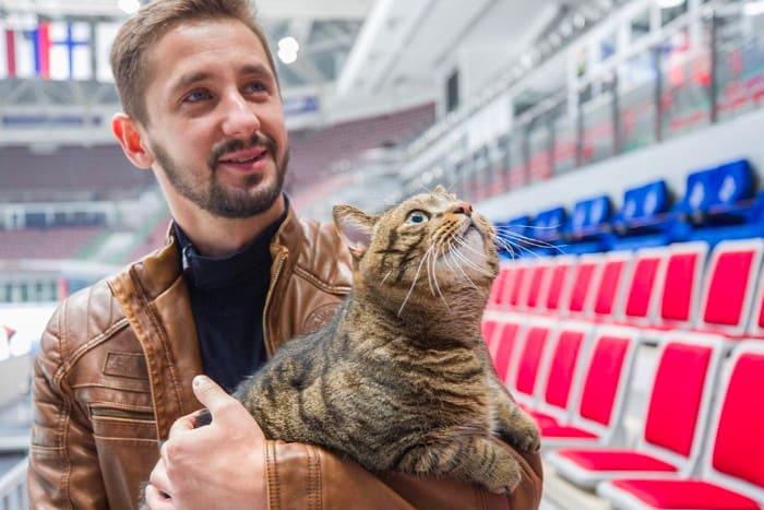 Кот Виктор на руках у хозяина