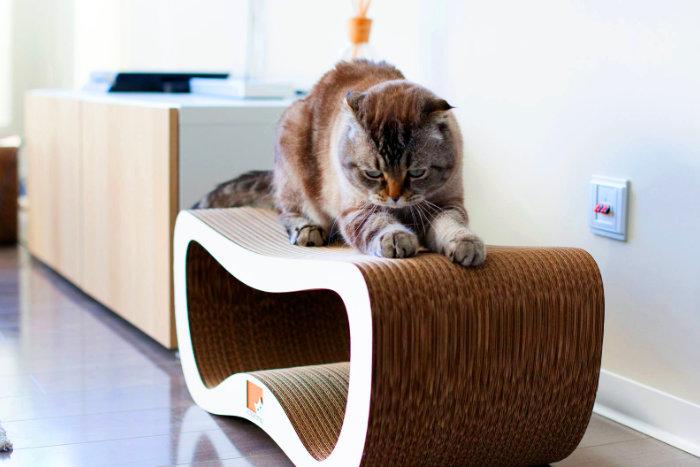 Кот лежит на картонной когтеточке